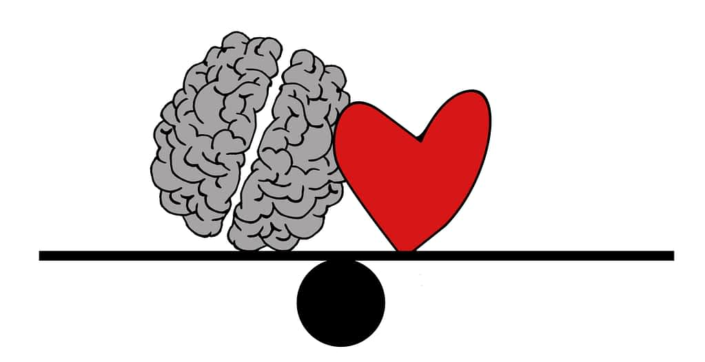 Heart and brain sitting balanced on a seesaw