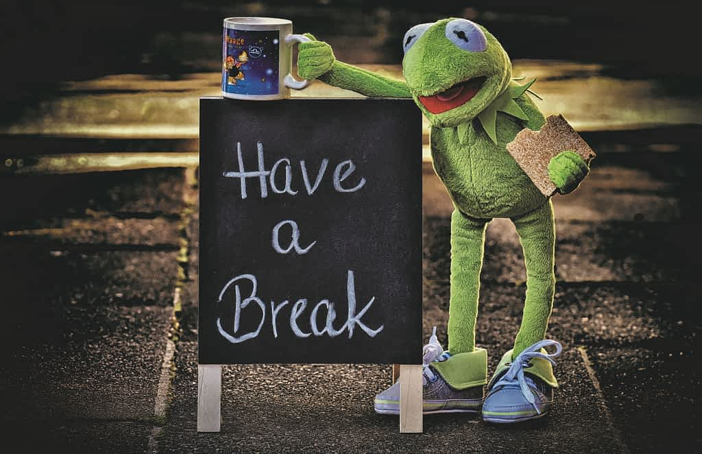 Kermit the frog next to a sign that says Have a Break
