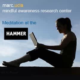 Mindful Meditation at the Hammer